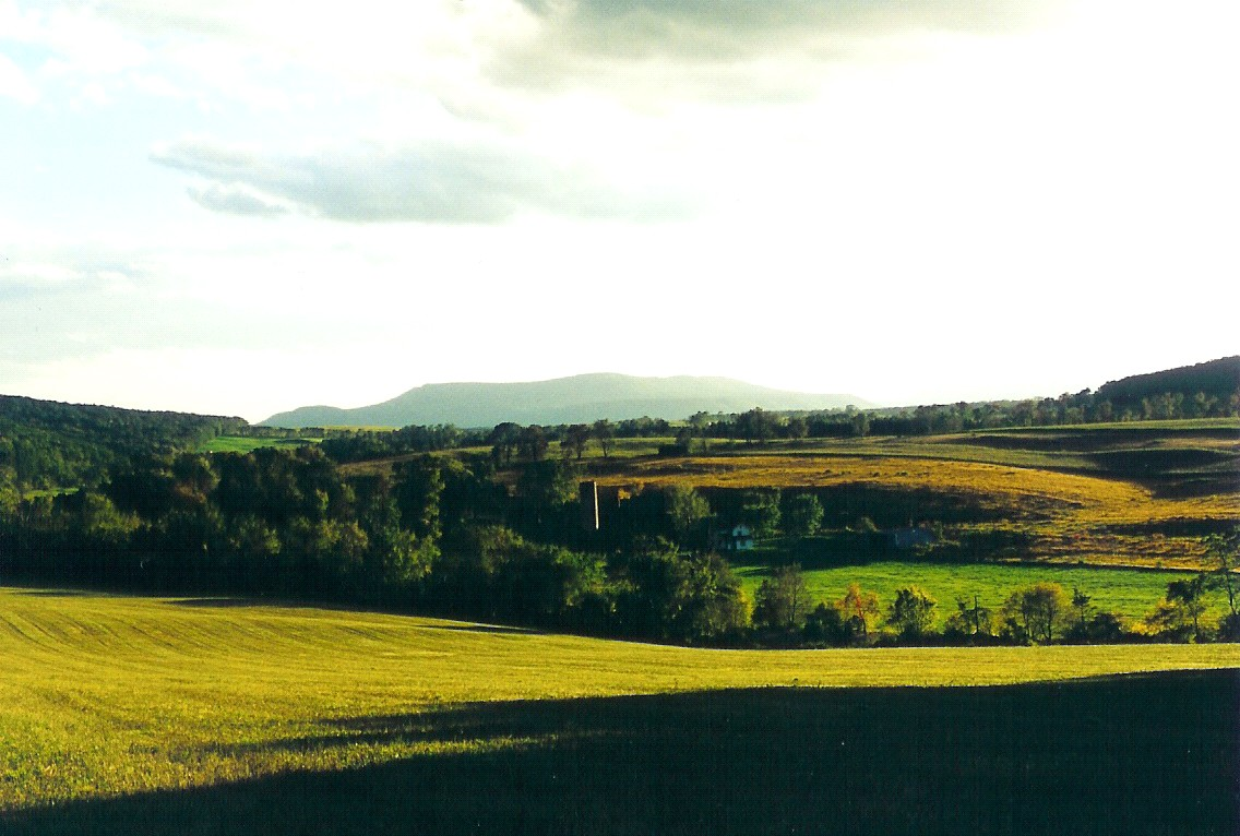 Field near Saddle Creek Farm in PA