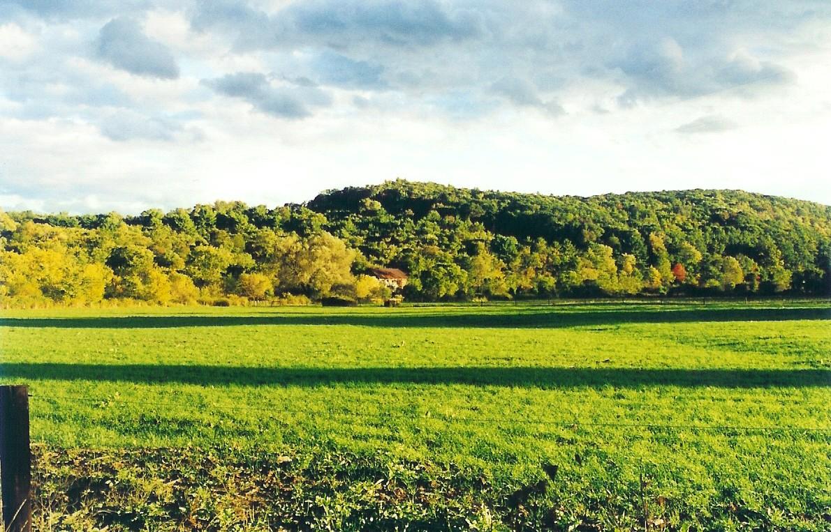 Field on Saddle Creek Farm